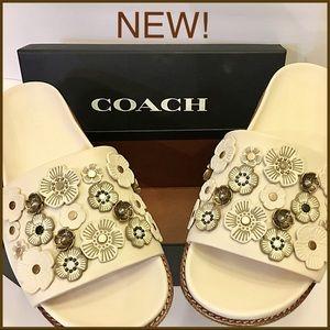 ff197bede69 Coach Shoes - NIB Coach Tea Rose Sport Slides Sandals